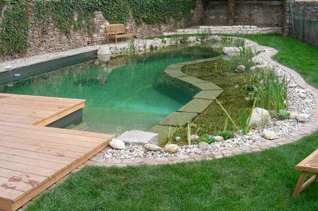 37 best organic pool natural pool images on pinterest - Green garden piscina ...