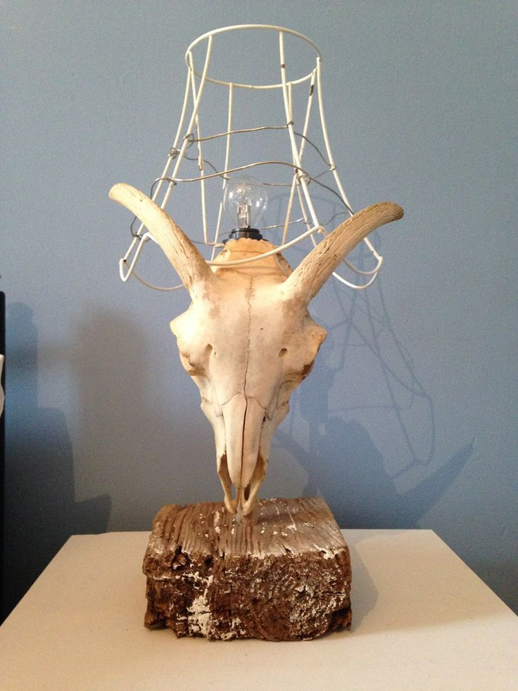 Antler Up Cycled Wire Lamp As Featured In The Great Interior Design Challenge Image By