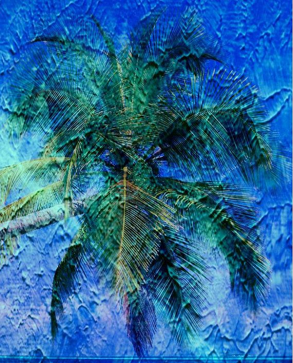 PALM TREE PHOTO painting look. perfect for your by ZAPPERART, $6.00