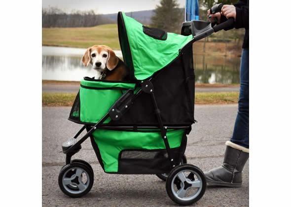 Dog In A Pet Stroller No No Baby No Pinterest