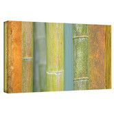 Found it at Wayfair - 'Bamboo Green Orange' by Cora Niele Gallery Wrapped on Canvas