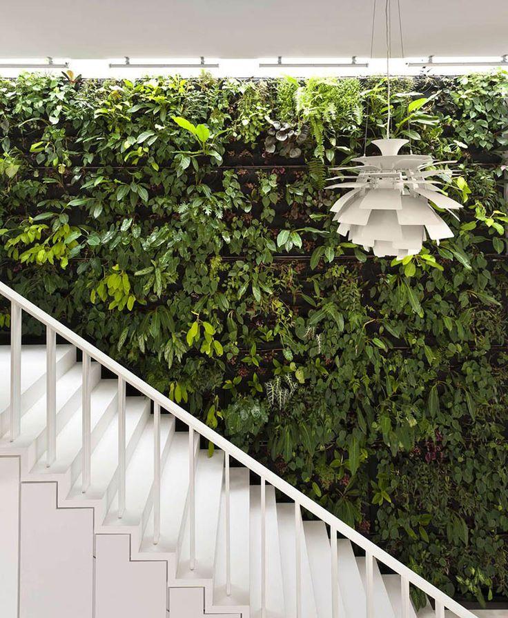 8 Benefits of Green Walls 101 best