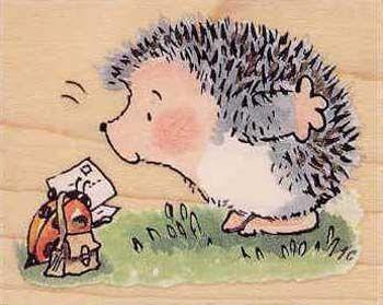 Hedgehog and Ladybug