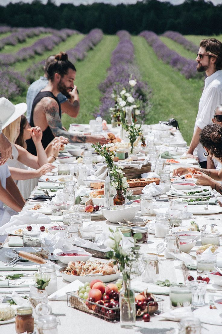 All white table setting with fruits, berries and flowers for a brunch in the lavender fields.