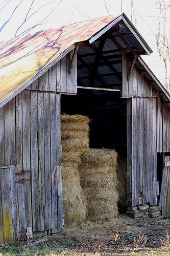 Edgmon hay barn (circa 1920) at south end of Boxley Valley in northwest Arkansas. Located at trailhead parking area for Buffalo River Trail and Upper Buffalo River Wilderness Area. by danjdavis