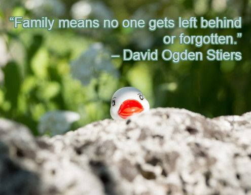 """Family means no one gets left behind or forgotten."" – David Ogden Stiers"