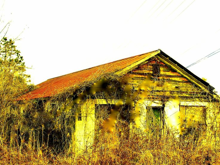 Nuhaka film.: Photo