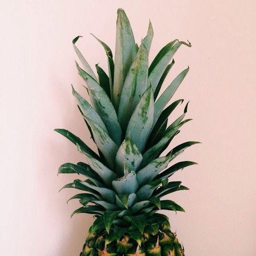 tumblr pineapple wallaper iphone wallpapers fruit