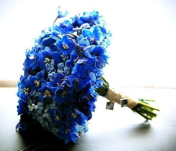 Dark Blue Flowers For Wedding Bouquets: Dark Blue Delphinium Bouquet
