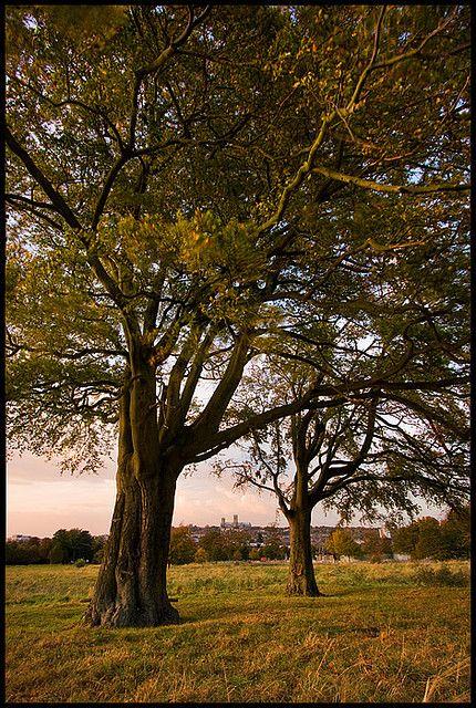 Lincolnshire England