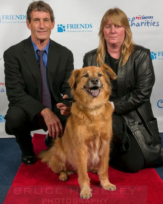 Friends of Animal Care and Control