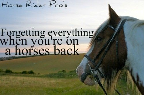 Wanna make a sign that says this to put over one of the horse stalls