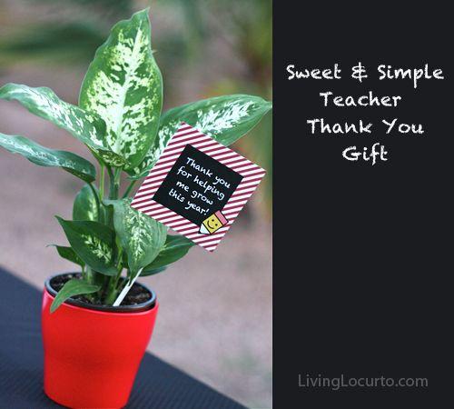 A simple Teacher Appreciation Gift Idea with Free Printable Tags by @LivingLocurto LivingLocurto.com