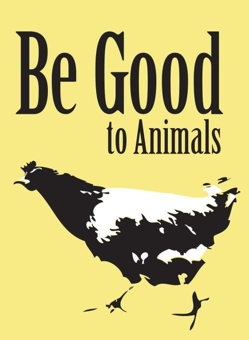 "please be good to animals: don't harm them; don't let them be harmed for you; don't treat them as ""things"" #vegan"
