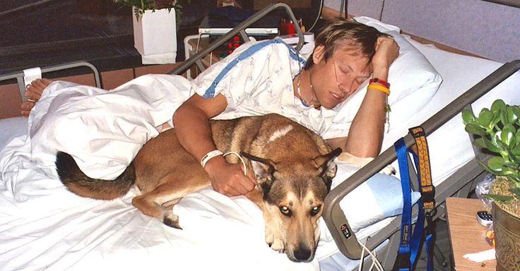 Los médicos le dicen que se vaya del cuarto de su dueño. Mira la reacción del perro