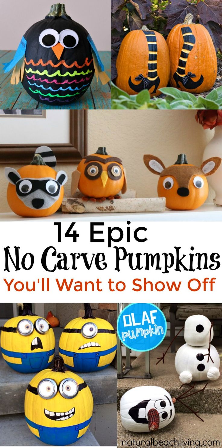 14 epic no carve pumpkins youll want to show off cute pumpkinpumpkin craftspumpkin - Cute Halloween Crafts