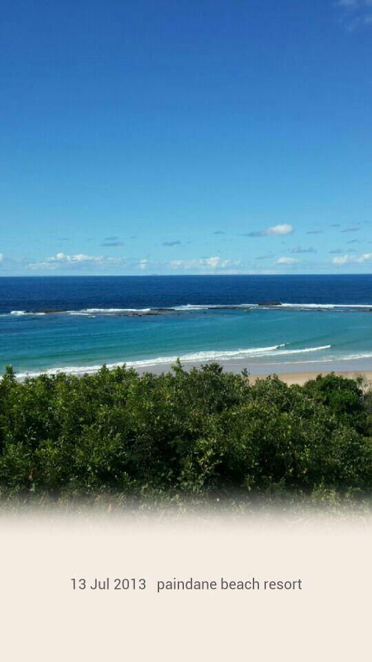 Mozambique paindane reef