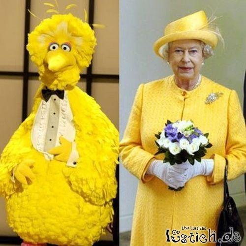 Bibo und die Queen
