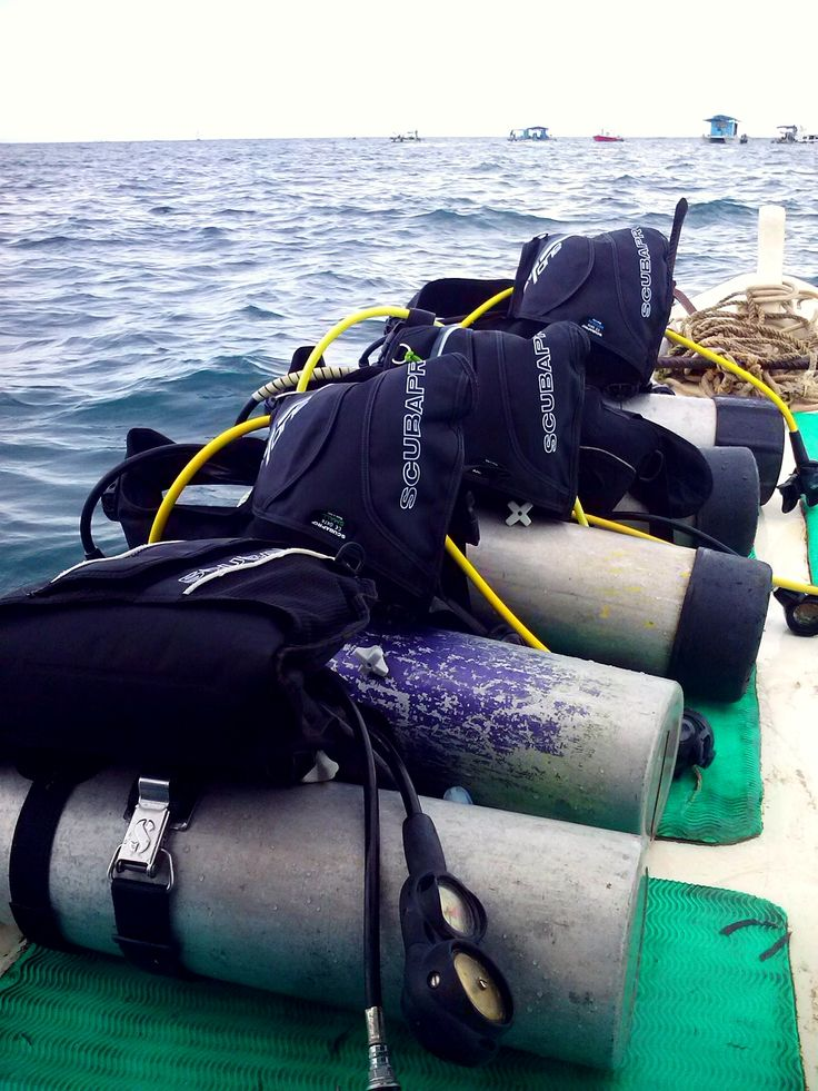 try the scuba diving for the first time at benoa bali..