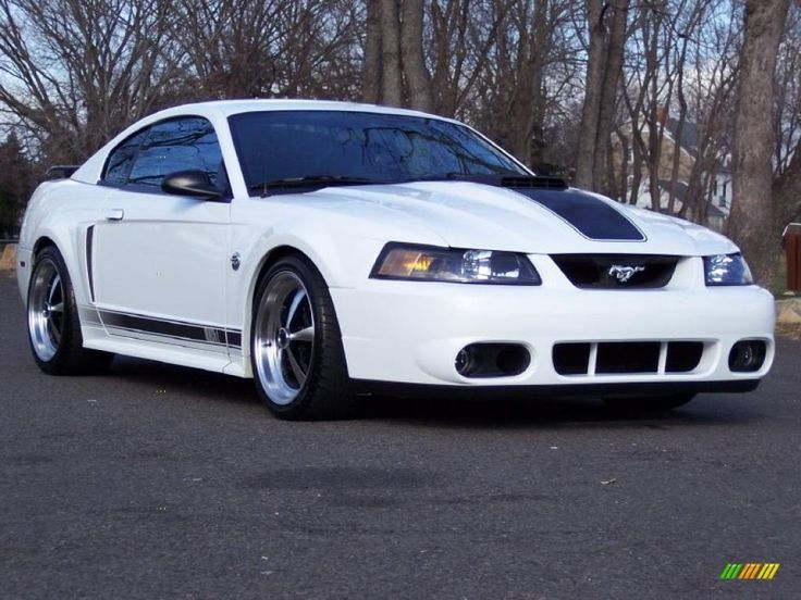 2004 Ford Mustang Mach 1  Just like mine.. rm