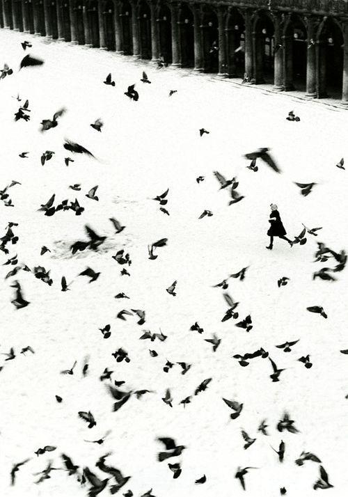 Venezia - Photo By Gianni Berengo Gardin