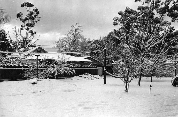 A home in North Hollywood blanketed in snow amid a storm that left more than half an inch of snow covering the Civic Center in downtown Los Angeles (January 11, 1949). In the San Fernando Valley, almost a foot of snow accumulated over three days.
