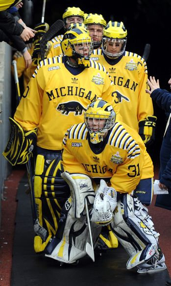 Michigan vs Michigan St. at the Big House. Record breaking game for attendance at a hockey game
