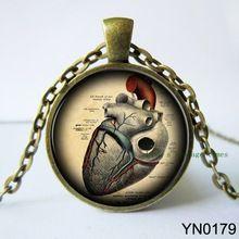 Урожай стимпанк анатомический в форме сердца ожерелье анатомия ювелирные изделия гот кулон со стеклянной кабошон