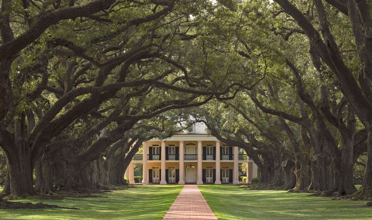 Absolutely Gorgeous... Oak Alley Plantation Louisiana-