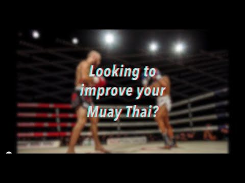 Amazon.com: Muay Thai Master Saekson - 4 DVD Set: Saekson ...