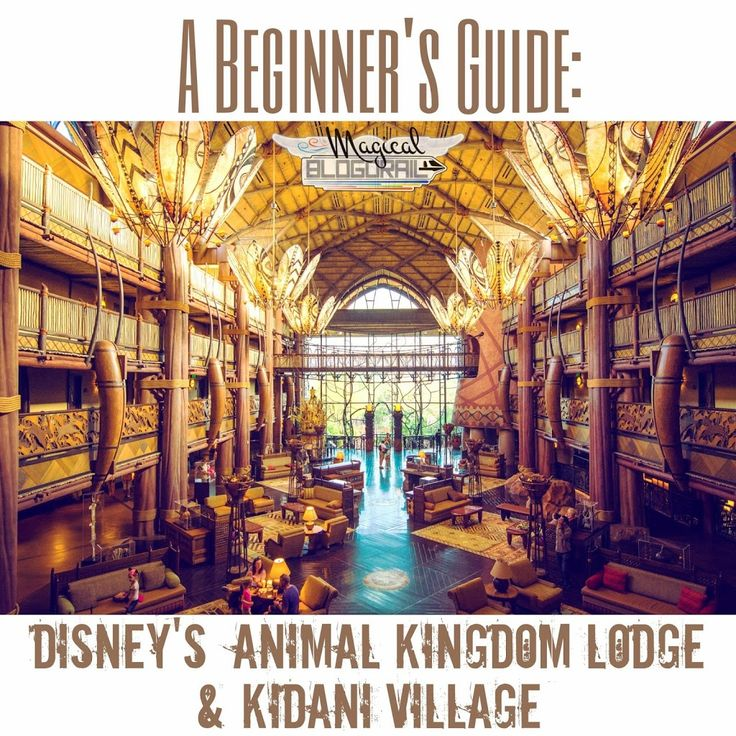 Great beginner guide to Disney's Animal Kingdom Lodge