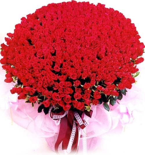 #rose #valentine