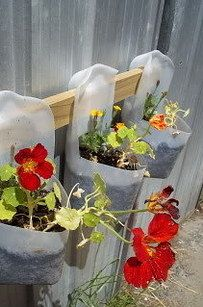 These pretty planters were made from milk jugs.   33 Impossibly Cute DIYs You Can Make With Things From Your Recycling Bin