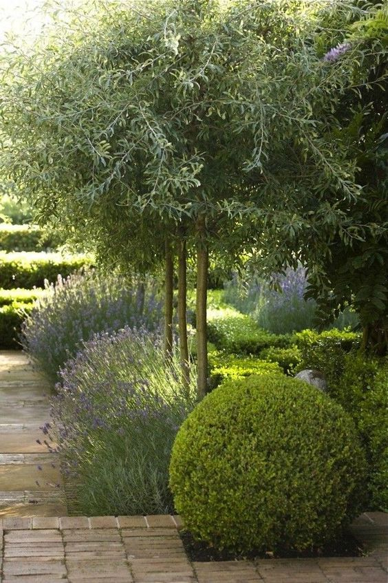 989 Best Images About Glorious Gardens On Pinterest | Gardens