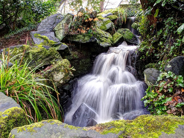 Small waterfall in Endcliffe Park, Sheffield.