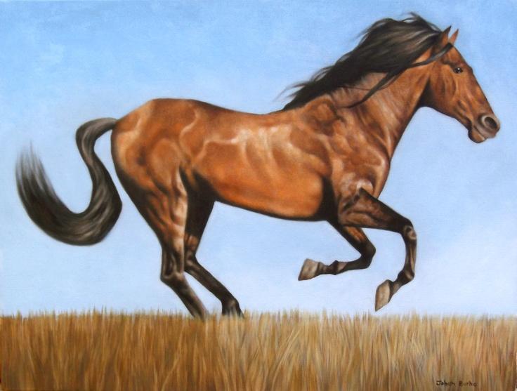 wild horse. oil on canvas, 2012