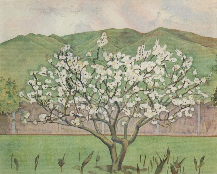 'Tree In Blossom', watercolour painting by Rita Angus. (1946) FHE Galleries collection.