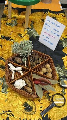 Invitation to make impressions using nature materials. For more inspiring classrooms visit: http://pinterest.com/kinderooacademy/provocations-inspiring-classrooms/ ≈ ≈