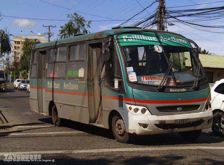 https://flic.kr/p/WSma1E | ← Buses Linea 2 Los Angeles ©→ | Mascarello Gran Micro M.Benz Urbano Paillihue Avellano Linea 2 imagen Sergio Arteaga 2016 Los Angeles.