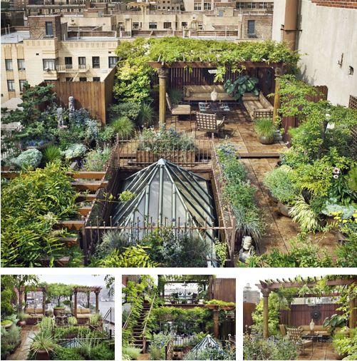 city roof top garden