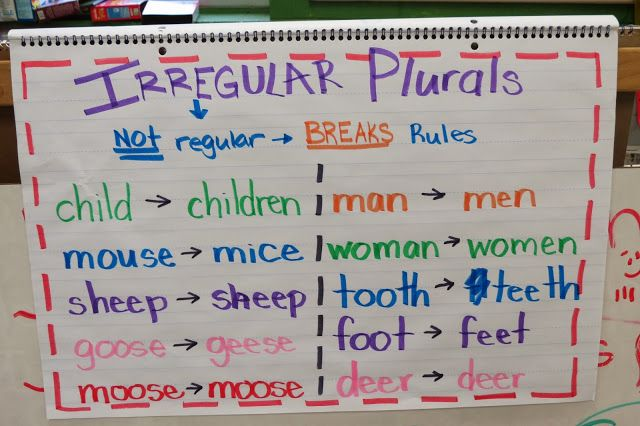 Irregular Plurals Anchor Chart