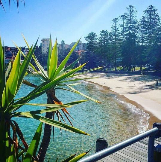 Damn Manly, you FINE. Working at Manly Wharf Bar looks pretty darn good for this upcoming summer season... Legends only need apply: http://www.tastyjobs.com.au/company/Manly+Wharf+Hotel/ Insty image @manlywharfhotel