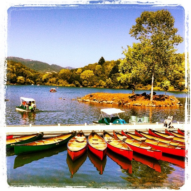 Lake Ralphine! (Howarth Park, Santa Rosa