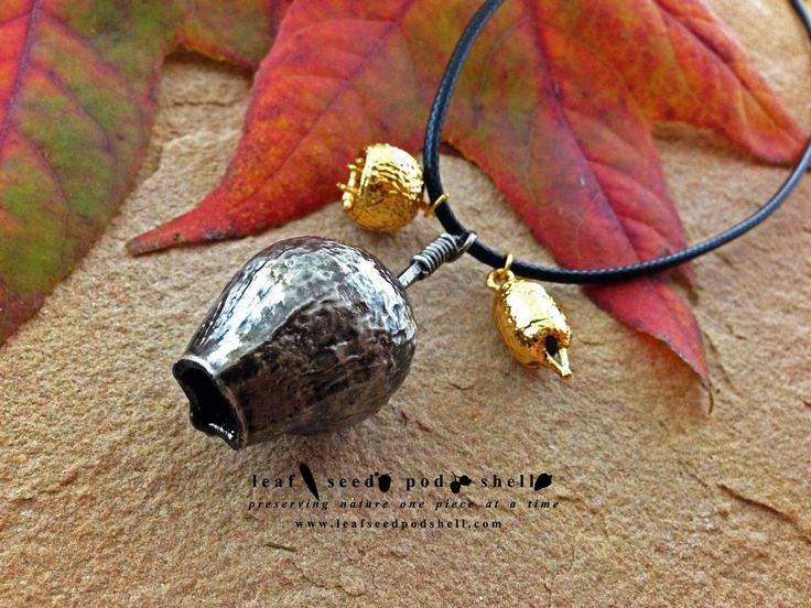 This little fellow is an antique silver electroformed Australian gum nut with two gold plated gum nut companions.  Available online, link is in our bio. #leafseedpodshell #leafseedpodshelljewelry #birdhouse #leaves #leaf #acorn #acorns #seeds #pods #shells #copper #electroform #electroforming #electroformed #electroplated #electroplating #nature #natural #rustic #plating #jewelry #jewellery #pendant #pendants #handmade #handmadejewelry