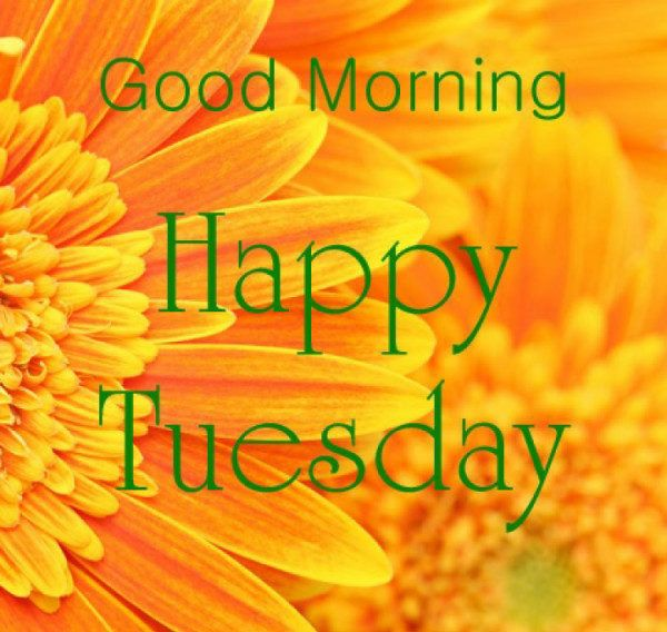 tuesday morning | Good Morning Wishes On Tuesday - Good Morning Pictures