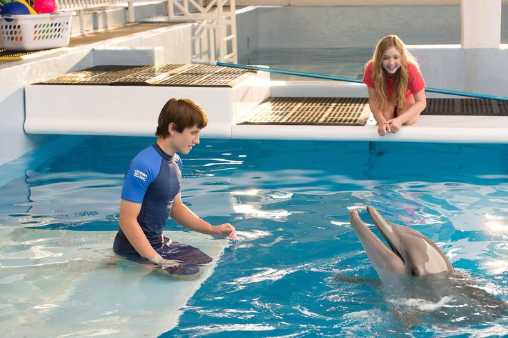 Still of Nathan Gamble and Cozi Zuehlsdorff in Dolphin Tale 2 (2014) http://www.movpins.com/dHQyOTc4NDYy/dolphin-tale-2-(2014)/still-1088669952