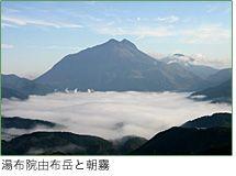 湯布院由布岳と朝霧