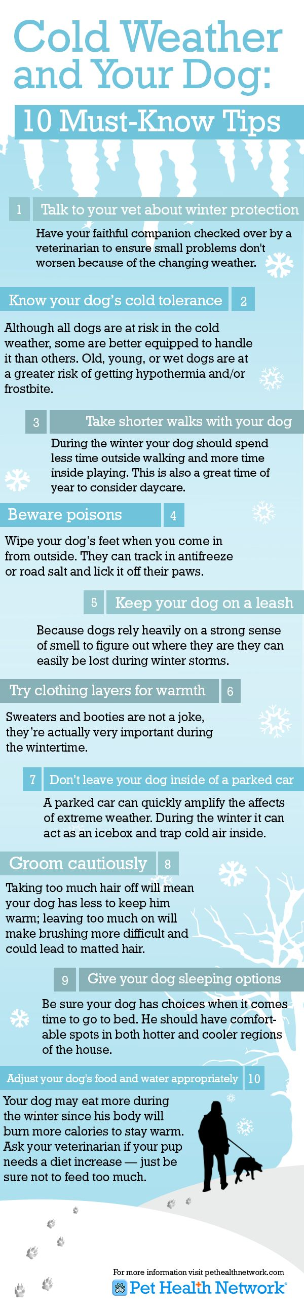 Cold weather tips for dogs. Learn more here: www.aspca.org/pet-care/cold-weather-tips