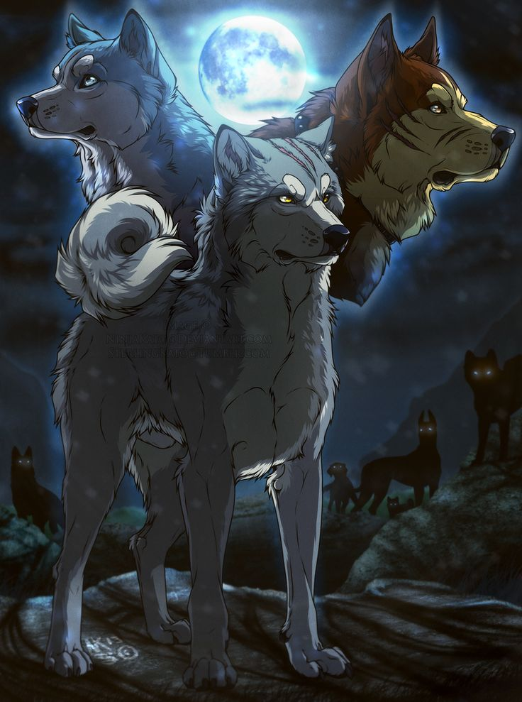 ''Becoming a legend'' (Ginga Gin fan art) by NinjaKato on deviantART