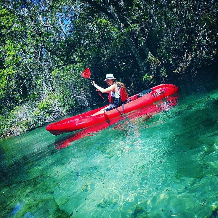 (Русский ) It was an absolutely amazing experience - today I went kayaking for the first time and I am so so so impressed by it. I still cannot believe how picturesque this place is: bright blue water which is absolutely clear I mean so clear you can see giant fish swimming there and manatees. We saw 4 manatees and so many pretty birds and white sand and blue water. White sand and blue water - I can look just at this forever! But also - the silence. It was so quiet that you could hear your…